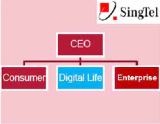 Singtel Digital Life - Core Business
