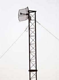 800MHz LTE Spectrum